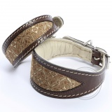 DG Exclusive collar BROCADE BROWN