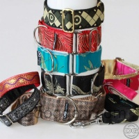 Fabric collars and leads